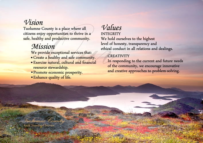 mission  vision and value statements