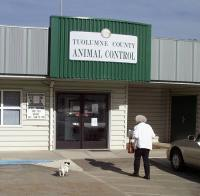 Tuolumne County Animal Control